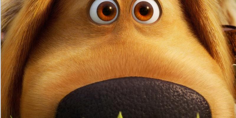 Trailer & Poster For Pixar's DUG DAYS – On Disney+ Sept 1